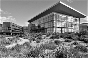 Photo of University of Wollongong Innovation Campus
